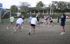 Lourdes Lacrosse